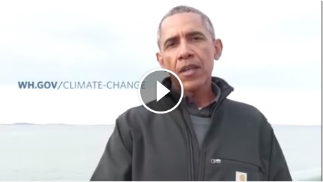 Barack Obama Wearing Carhartt